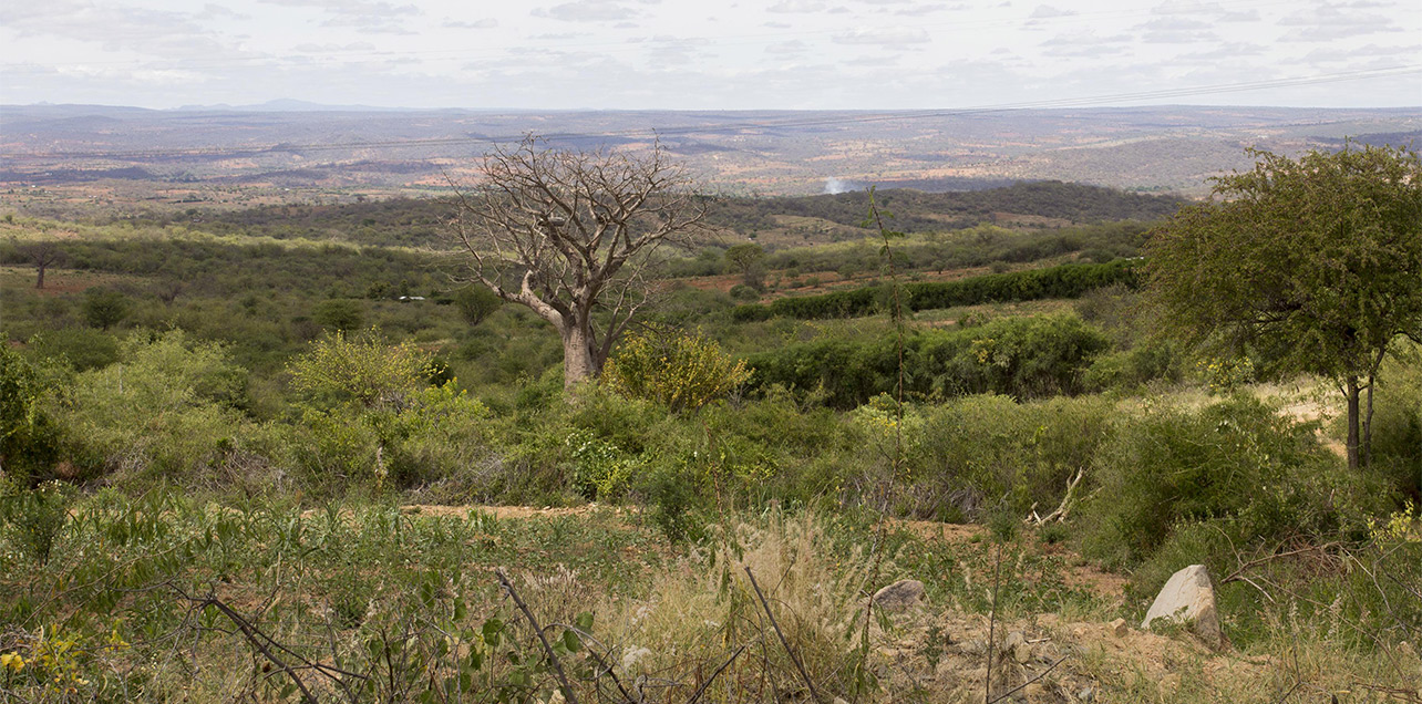 Kenya Climate Investment Funds