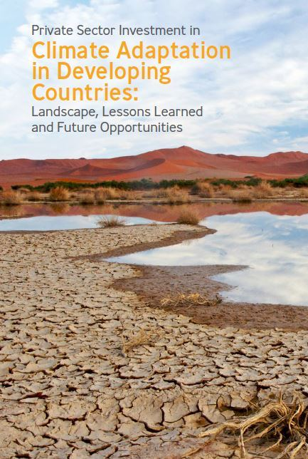 Private Sector Investment In Climate Adaptation In
