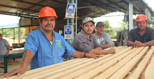 Logging industry workers, Mexico.