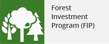 Forest Investment Program(FIP)