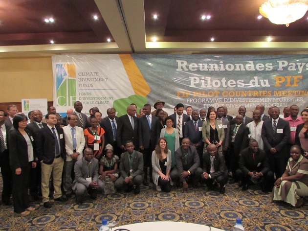 FIP Pilot Countries meeting participants