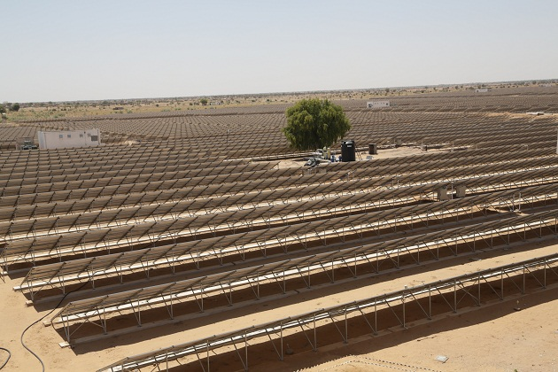 Solar collector field