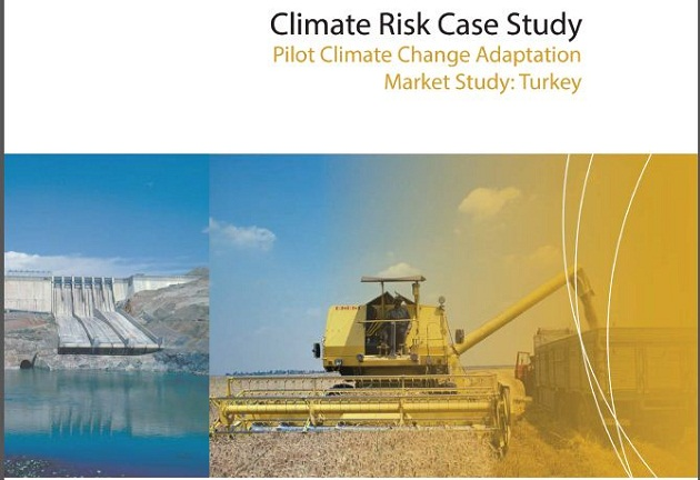 Turkey case study cover page