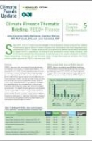 Climate Finance Thematic Briefing: REDD+ Finance by Heinrich Boll Stiftung