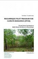 Private Sector Investment to Build Climate Resilience in Mozambique: Forestry - Final Report