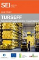 Turkish Sustainable Energy Financing Facility (TurSEFF) Case Study