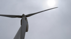AfDB and Partners Seek Egypt's Experience in Managing Wind Energy Effects on Birds and Bats