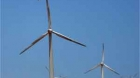 Biodiversity and Wind Energy